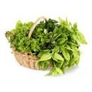 В данной категории представлена свежая зелень (укроп, петрушка и т.д.), а также отечественные и импортные салаты.